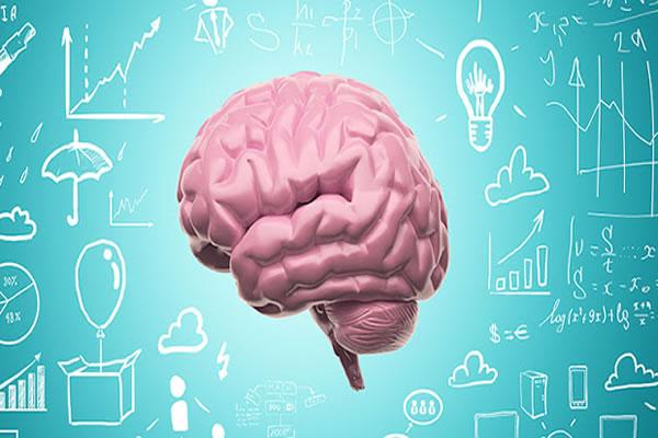 Neuroeducação, veja aqui se realmente vale a pena!